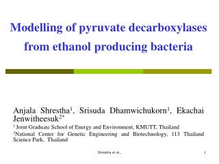 Modelling of pyruvate decarboxylases from ethanol producing bacteria