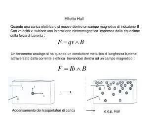Quando una carica elettrica q si muove dentro un campo magnetico di induzione B  Con velocit  v, subisce una interazione
