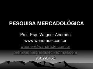 PESQUISA MERCADOL GICA