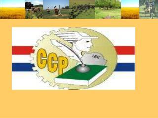 COLEGIO DE CONTADORES DEL PARAGUAY NIIF PYMES