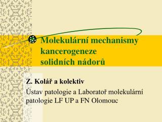 Molekul rn  mechanismy kancerogeneze solidn ch n doru