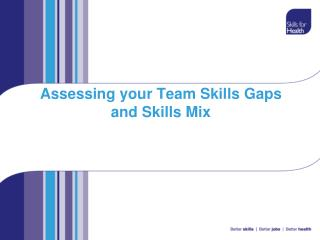 Assessing your Team Skills Gaps and Skills Mix