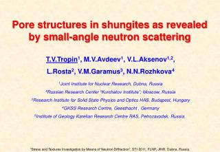 Pore structures in shungites as revealed by small-angle neutron scattering