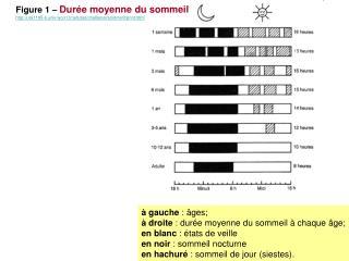 gauche :  ges;   droite : dur e moyenne du sommeil   chaque  ge; en blanc :  tats de veille en noir : sommeil nocturne