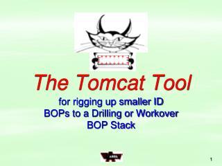 Tomcat Tool - PowerPoint Presentation