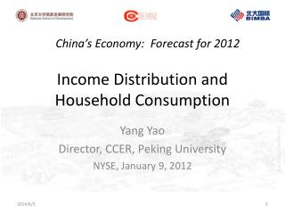 Income Distribution and Household Consumption