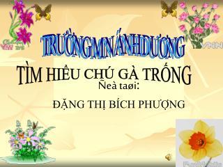 e  ta i:  NG TH B CH PHUNG