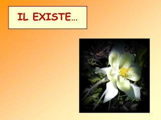 IL EXISTE