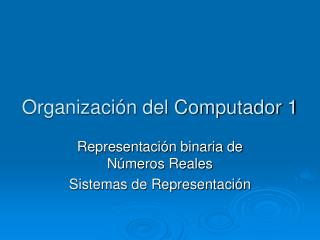 Organizaci n del Computador 1