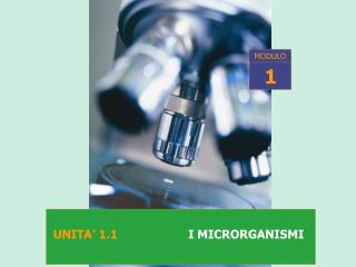 UNITA  1.1                   I MICRORGANISMI