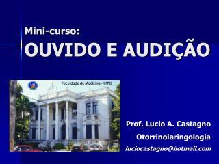 Mini-curso:  OUVIDO E AUDI  O