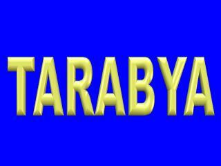 Tarabya Bosch Servisi – 299 15 34  Bosch İstinye Emirgan Ser