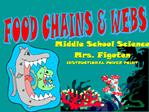 FOOD CHAINS  WEBS