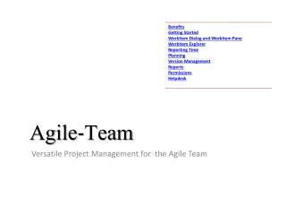 Agile-Team