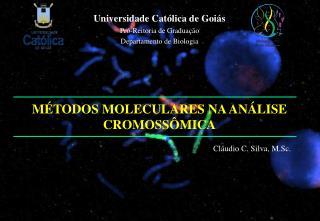 M TODOS MOLECULARES NA AN LISE CROMOSS MICA