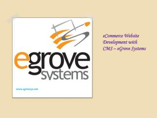 eCommerce Website Development with CMS ??? eGrove Systems