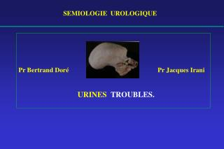SEMIOLOGIE  UROLOGIQUE