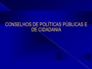 CONSELHOS DE POL TICAS P BLICAS E DE CIDADANIA
