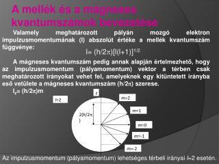 A mell k  s a m gneses kvantumsz mok bevezet se