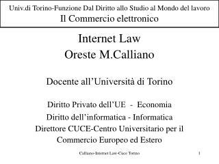 Univ.di Torino-Funzione Dal Diritto allo Studio al Mondo del lavoro Il Commercio elettronico