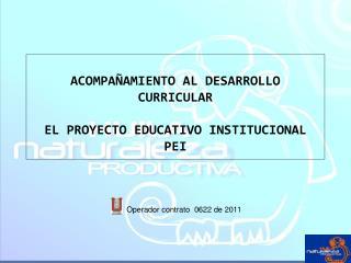 ACOMPA AMIENTO AL DESARROLLO CURRICULAR  EL PROYECTO EDUCATIVO INSTITUCIONAL PEI