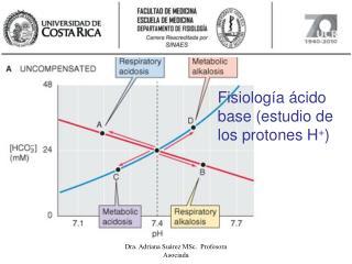 Fisiolog a  cido base estudio de los protones H
