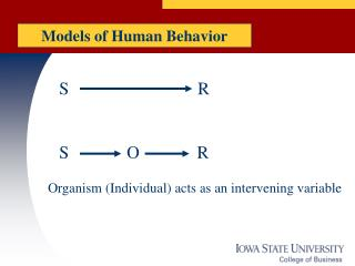 Models of Human Behavior