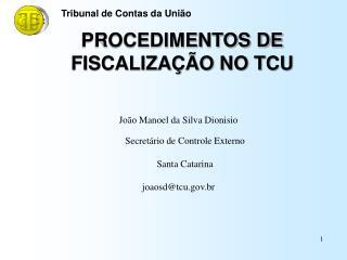 PROCEDIMENTOS DE  FISCALIZA  O NO TCU