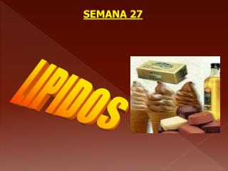 SEMANA 27