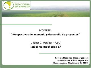 BIODIESEL  Perspectivas del mercado y desarrollo de proyectos   Gabriel D. Obrador   CEO Patagonia Bioenerg a SA