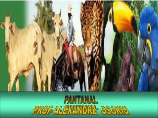 PROF. ALEXANDRE S. OS RIO