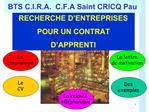 BTS C.I.R.A.  C.F.A Saint CRICQ Pau
