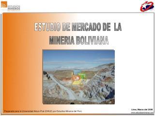 ESTUDIO DE MERCADO DE  LA  MINERIA BOLIVIANA