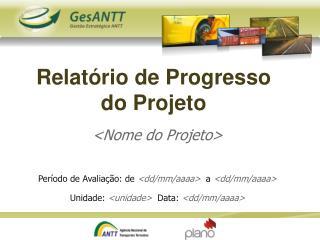 Relat rio de Progresso do Projeto