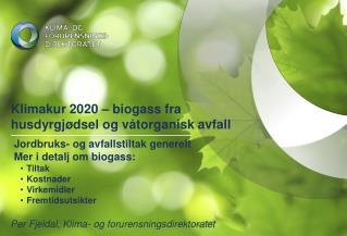 Klimakur 2020   biogass fra husdyrgj dsel og v torganisk avfall