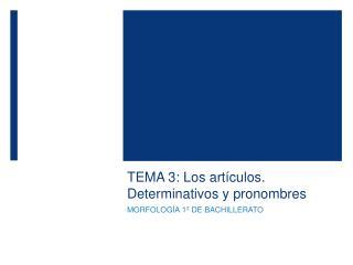 TEMA 3: Los art culos. Determinativos y pronombres