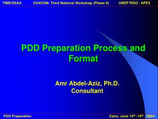 PDD Preparation Process and Format