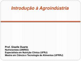 Prof. Giselle Duarte Nutricionista UNIRIO Especialista em Nutri  o Cl nica UFRJ Mestre em Ci ncia e Tecnologia de Alimen