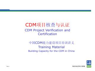 CDM CDM Project Verification and Certification