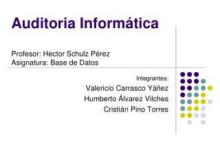 Auditoria Inform tica  Profesor: Hector Schulz P rez   Asignatura: Base de Datos