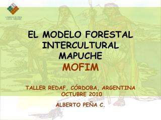 EL MODELO FORESTAL INTERCULTURAL MAPUCHE MOFIM  TALLER REDAF, C RDOBA, ARGENTINA  OCTUBRE 2010 ALBERTO PE A C.