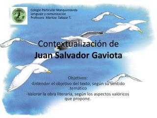 Contextualizaci n de  Juan Salvador Gaviota