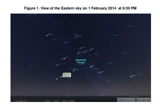 Figure 1. View of the east northeastern sky on November 3, 2012  at 7:00 PM