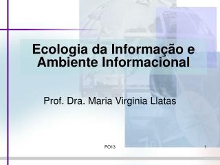 Ecologia da Informa  o e Ambiente Informacional