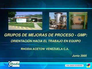 GRUPOS DE MEJORAS DE PROCESO - GMP: ORIENTACI N HACIA EL TRABAJO EN EQUIPO