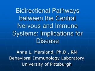 Bidirectional Pathways between the Central Nervous and Immune Systems: Implications for Disease