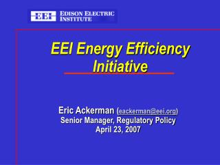 EEI Energy Efficiency Initiative