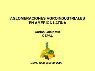 AGLOMERACIONES AGROINDUSTRIALES  EN AM RICA LATINA  Carlos Guaipat n CEPAL