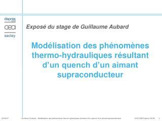 Mod lisation des ph nom nes thermo-hydrauliques r sultant d un quench d un aimant supraconducteur