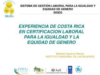 SISTEMA DE GESTI N LABORAL PARA LA IGUALDAD Y  EQUIDAD DE GENERO SIGEG